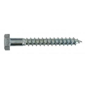 10X140 TIREFOND boite x20 - VYNEX - 310178022654   GENMA
