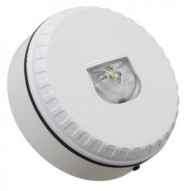 Diffuseur Lumière LED rouge Solista Lx W Mural IP33 - NUG30492 - EATON NUGELEC